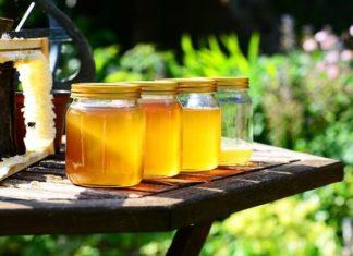 cum recunosti mierea de albine